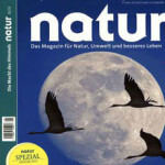 Jahresabo der Zeitschrift Natur mit 20 Cent Gewinn!