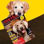 """Zeitschrift """"Der Hund"""": 2 Ausgaben kostenlos"""