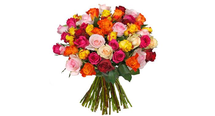 44 bunte Rosen BlumeIdeal