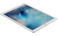 Apple iPad Pro (12,9 Zoll)