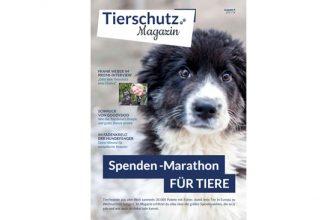 Gratis Tierschutz-Magazin