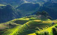 Günstige Flüge nach Vietnam