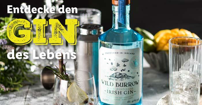LIDL Gin Angebot