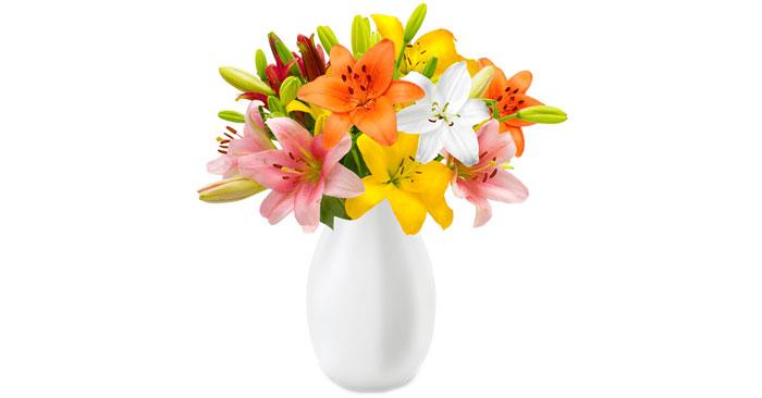 Lilienstrauß BlumeIdeal