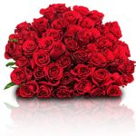 """Rote Rosen """"Classic Red"""""""