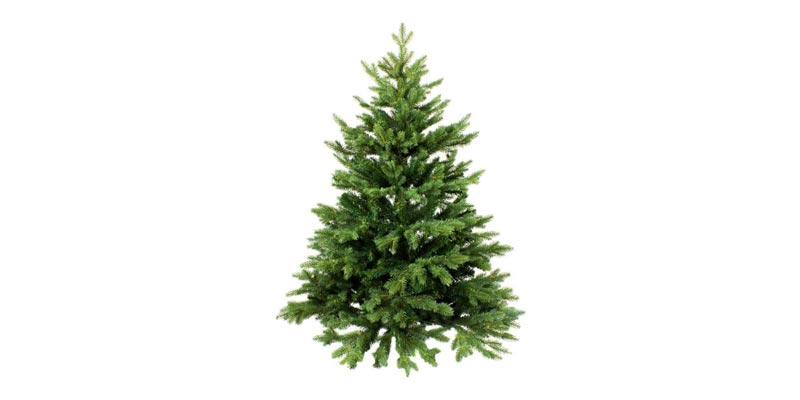 Weihnachtsbaum online bestellen