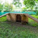 Hundespielplatz Köln Tagesticket oder Monatsticket für 4,99€ bzw. 24,99€