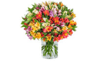 Inkalilien Blumen