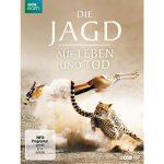 """BBC-Doku """"Die Jagd: Auf Leben und Tod"""" kostenlos in ARD Mediathek"""