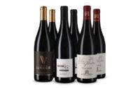Vicampo Parker Highlights
