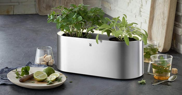 WMF Ambient Indoor-Kräutergarten
