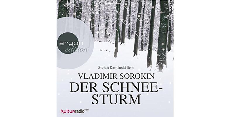 """Hörbuch """"Der Schneesturm"""""""