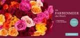 30 Rosen online verschicken für nur 17,90€ bei Miflora!