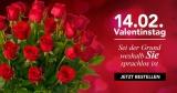 15% BlumeIdeal Gutschein – Blumen zum Valentinstag verschicken