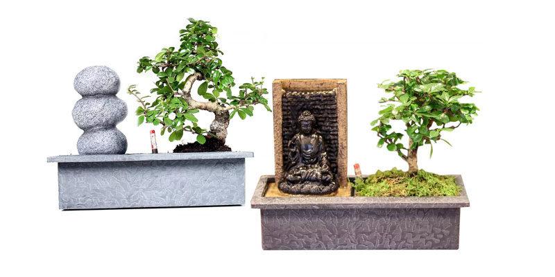 Bonsai Baum mit Wasserfall für 28,18€ (inkl. Versand)