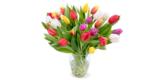 35 bunte Tulpen für nur 25,98€ bei BlumeIdeal bestellen