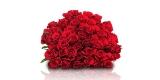 35 rote Rosen bei BlumeIdeal für 25,98€ inkl. Versand