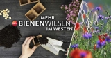 Gratis Samentütchen gegen das Bienensterben von WDR2