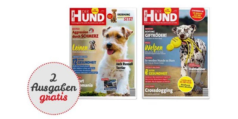 """2 Ausgaben der Zeitschrift """"Der Hund"""" kostenlos lesen"""