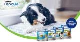 Purina Dentalife Zahnpflege-Snack für Hunde kostenlos testen