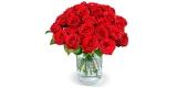 25 Red Naomi Rosen (50 cm Stiellänge) für 24,98€ inklusive Lieferung