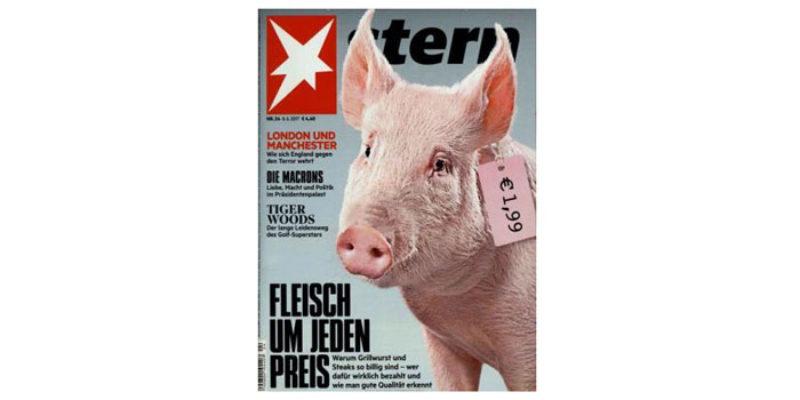 Stern Digital Abo (4 Ausgaben) kostenlos & ohne Kündigung