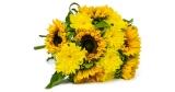 Blumenstrauß Sunshine Love (7x Sonnenblumen & 7x Chrysanthemen) für 20,98€