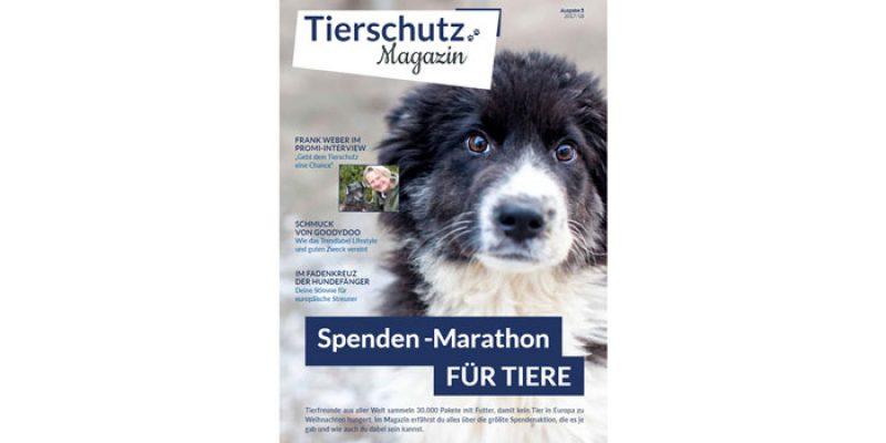 Kostenloses Tierschutz-Magazin beim Tierschutz-Shop