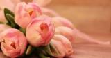 6€ Valentins Gutschein ohn MBW – z.B. Blumenstrauß zum Muttertag ab 14,98€ inkl. Versand