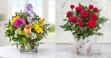14,02€ Valentins Wertgutschein für 5,60€ bei Groupon – z.B. Dolce Vita Blumenstrauß für 12,56€